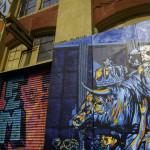 photo, Graffiti Mecca, Esteban Del Valle, Bull,  IMG_3569