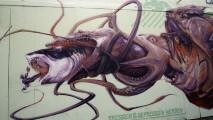photo,graffiti,  maneating red crustaceans, IMG_3600