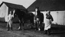 Julia Garland Murphy And Horses, Bob and Ned-2