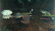 1024px-Winslow_Homer_-_Mink_Pond (1)