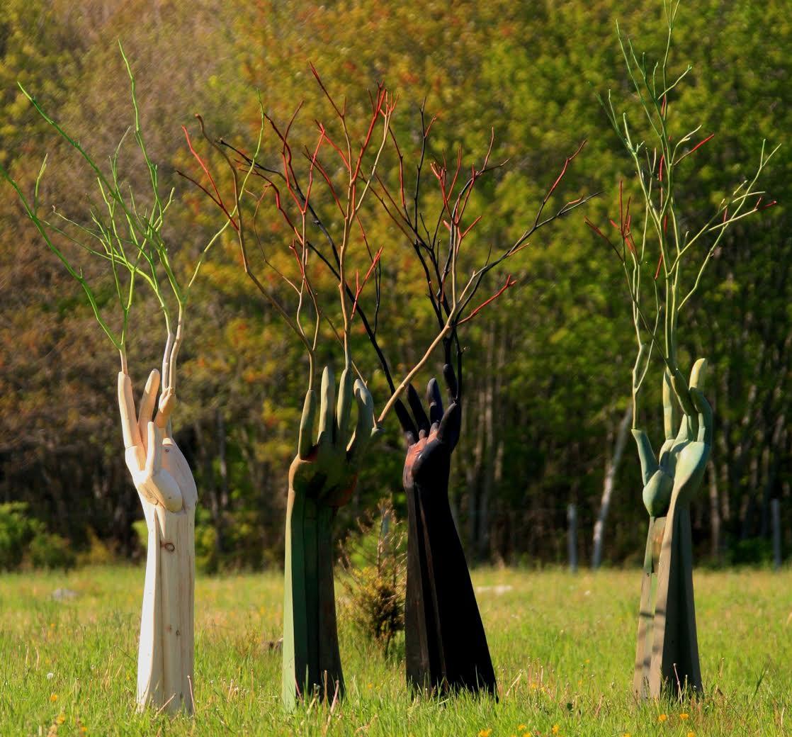 Sacred Grove,